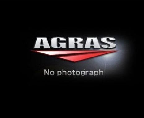 センターナット ガンメタ AGRAS(アグラス) Ninja400(ニンジャ400)18年