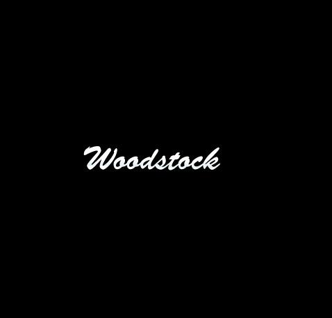 逆チェンジキット woodstock(ウッドストック) スポーツスター(〜03年)