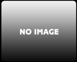 スクリーン SRタイプ スモーク ゼログラビティ(ZERO GRAVITY) NINJA H2R(15〜18年)